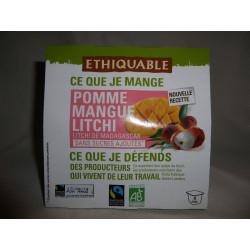 Dessert Ethiquable Litchi Mangue / 4x100g