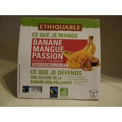 Dessert Ethiquable Banane Mangue Passion / 4x100g