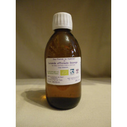 Hydrolat bio de Lavande off. Sauvage / 250ml