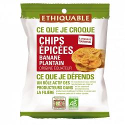 Chips de bananes Plantain Epicé / 85g