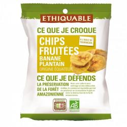Chips de Bananes Plantain Fruité / 85g