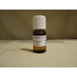 Huile Essentielle Eucalyptus citronné / 10 ml
